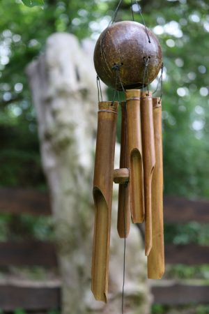 bambusz-csengo-kokusz